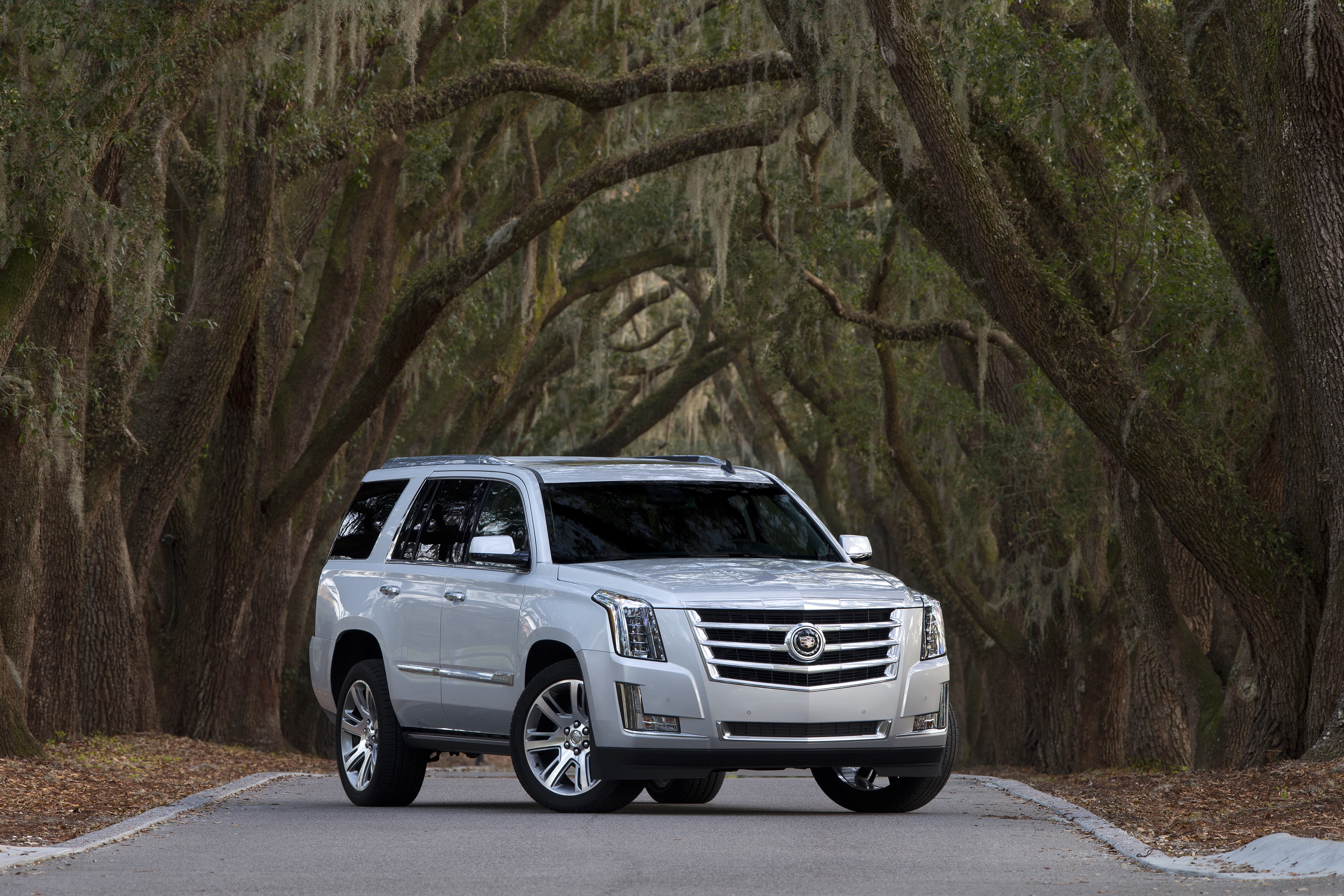platinum escalade standard luxury colors pricing and from premium cadillac levels buyers must have options trim guide leathers esv